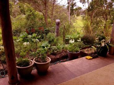 organic living